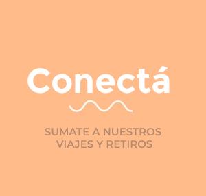 Conectá